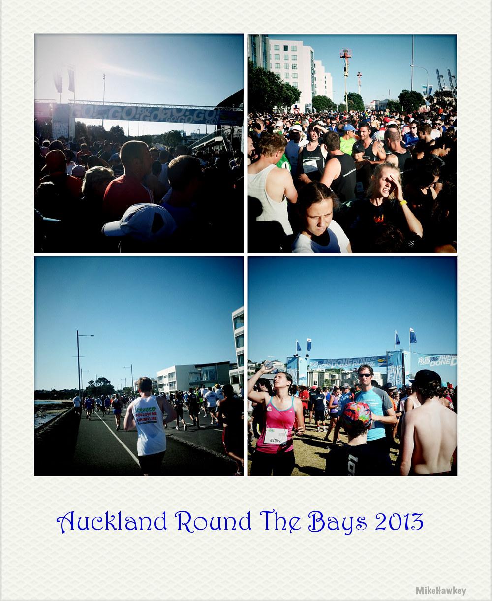 Round the bays