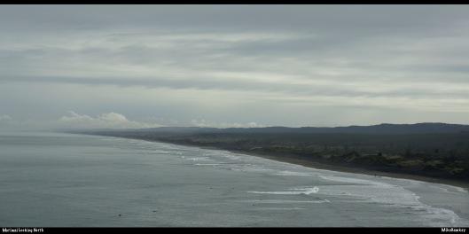 Muriwai looking North