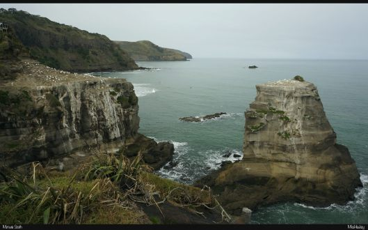 Muriwai South