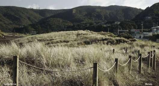 Aucklands West Coast