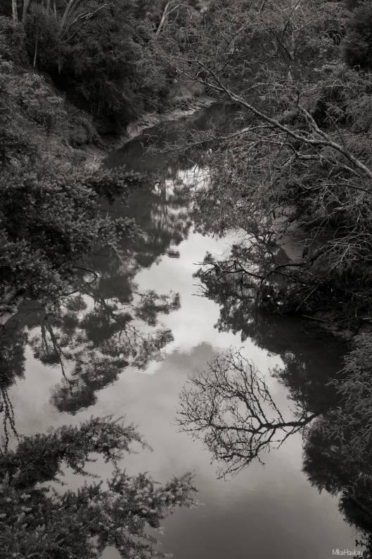 The Still River