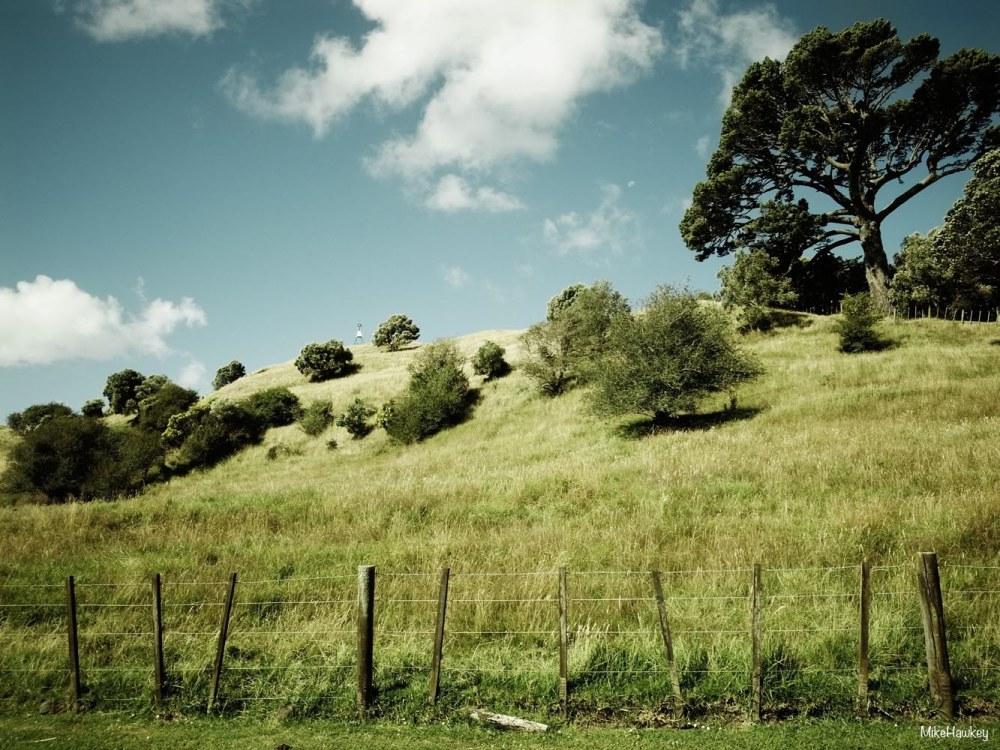 Mt Hobson2