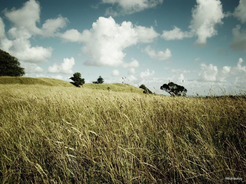 Mt Hobson9