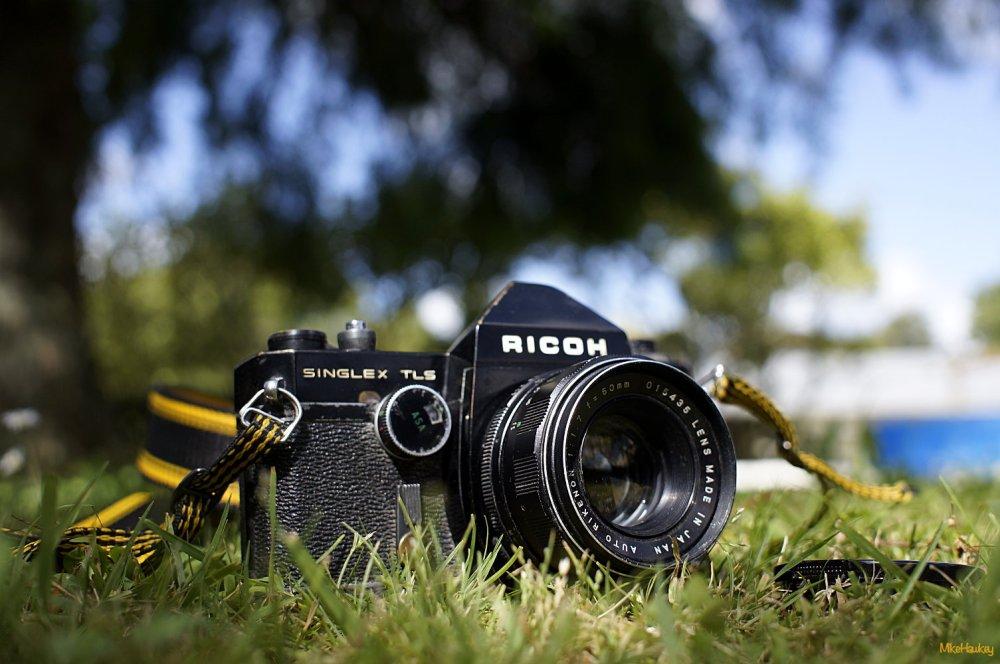 Ricoh TLS Garden