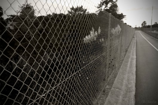 The fence that stops