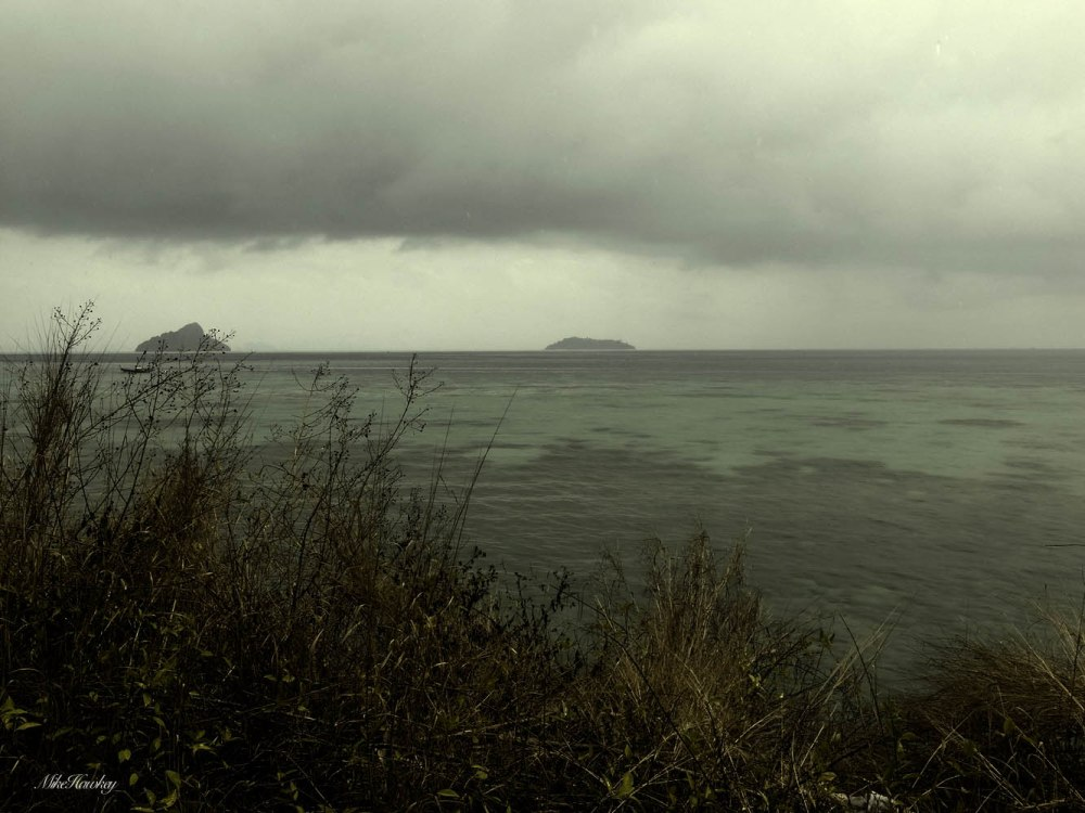 New Island 8