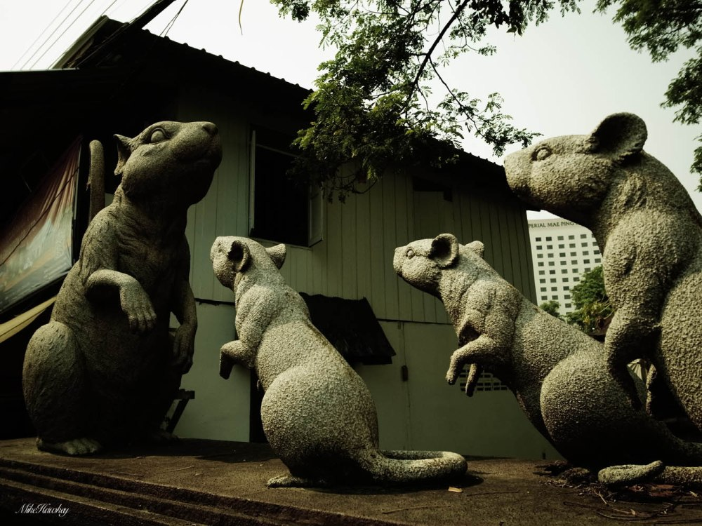 Rat Army