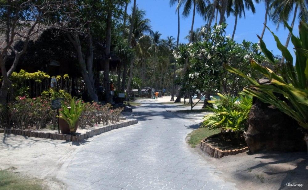 The resort 2